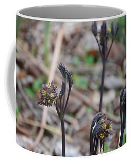 The Spring Sisters Coffee Mug