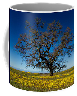 The Tree On Table Mountain Coffee Mug