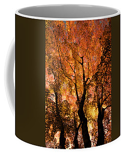 The Trees Dance As The Sun Smiles Coffee Mug