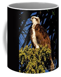 The View Coffee Mug