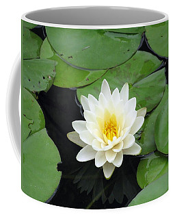 Coffee Mug featuring the photograph The Water Lilies Collection - 01 by Pamela Critchlow