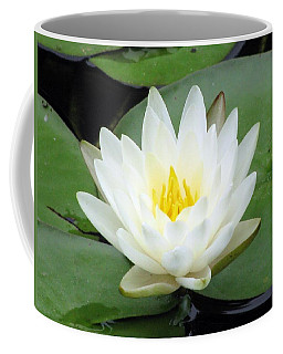 Coffee Mug featuring the photograph The Water Lilies Collection - 04 by Pamela Critchlow