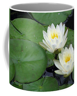 Coffee Mug featuring the photograph The Water Lilies Collection - 06 by Pamela Critchlow