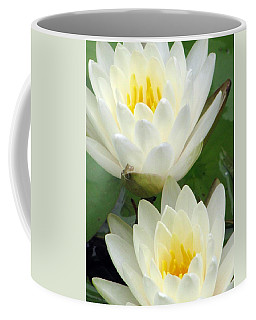 Coffee Mug featuring the photograph The Water Lilies Collection - 09 by Pamela Critchlow