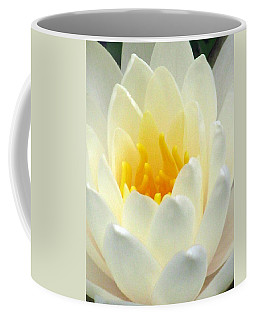 Coffee Mug featuring the photograph The Water Lilies Collection - 10 by Pamela Critchlow