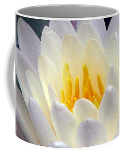 Coffee Mug featuring the photograph The Water Lilies Collection - 11 by Pamela Critchlow