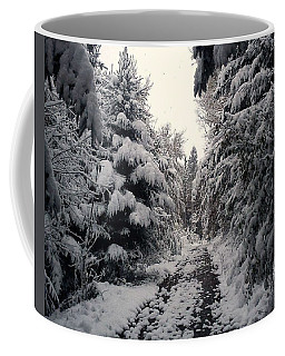 Coffee Mug featuring the photograph The Way In Snow by Felicia Tica
