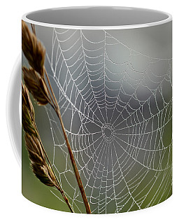 Coffee Mug featuring the photograph The Web by Kerri Farley