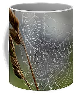 The Web Coffee Mug by Kerri Farley