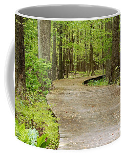 The Wooden Path Coffee Mug by Patrick Shupert