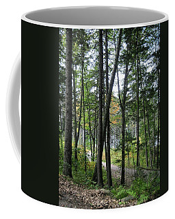 The Woods Coastal Maine Botanical Gardens Coffee Mug
