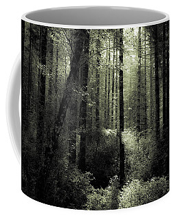 The Woods Coffee Mug by Katie Wing Vigil