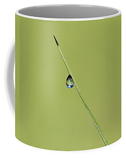 Coffee Mug featuring the photograph The World Within A Dewdrop by Penny Meyers