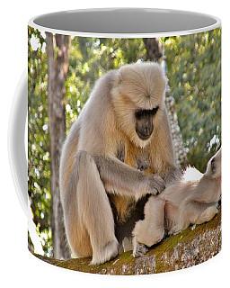There Is Nothing Like A  Backscratch - Monkeys Rishikesh India Coffee Mug