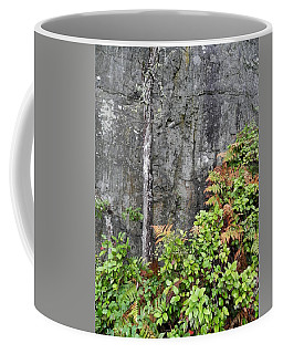 Coffee Mug featuring the photograph Thetis In Fall by Cheryl Hoyle