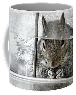 Thief In The Birdfeeder Coffee Mug