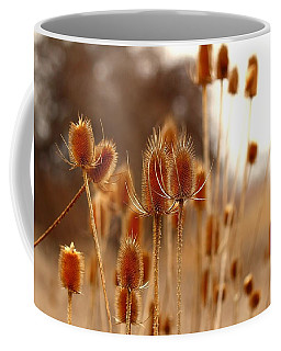 Coffee Mug featuring the photograph Thistles by Lynn Hopwood