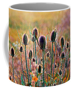 Thistles With Sunset Light Coffee Mug