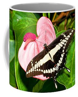 Thoas Swallowtail Butterfly Coffee Mug