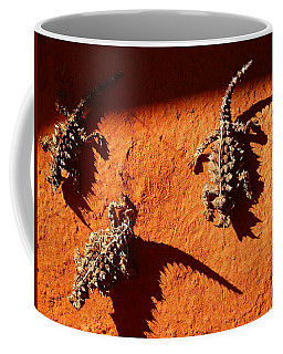 Coffee Mug featuring the photograph Thorny Devils by Evelyn Tambour