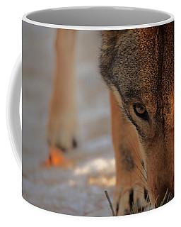 Those Eyes Coffee Mug by Karol Livote