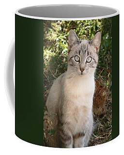 Those Eyes Coffee Mug by Laurel Powell