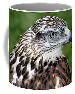The Threat Of A Predator Hawk Coffee Mug