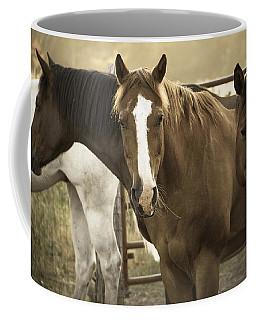 Coffee Mug featuring the photograph Three Amigos by Steven Bateson