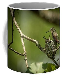 Three Beaks Coffee Mug