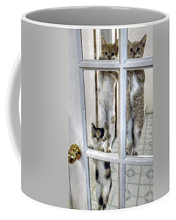 Three Kitten Door Deco Coffee Mug