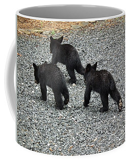 Coffee Mug featuring the photograph Three Little Bears In Step by Jan Dappen