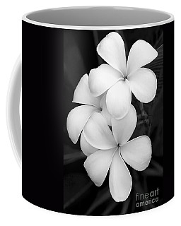 Three Plumeria Flowers In Black And White Coffee Mug