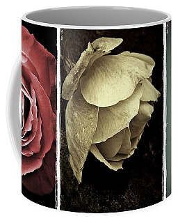 Coffee Mug featuring the photograph Three Roses by Patricia Strand