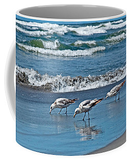Three Seagulls At Ocean Shore Art Prints Coffee Mug by Valerie Garner