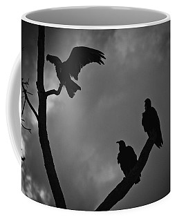 Coffee Mug featuring the photograph Three Vultures by Bradley R Youngberg