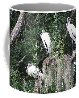 Three Wood Storks Coffee Mug