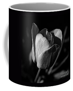 Threshold - Monochrome Coffee Mug