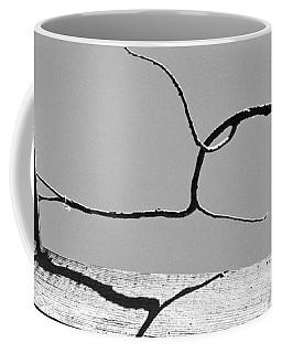 Through A Broken Barn Roof Coffee Mug