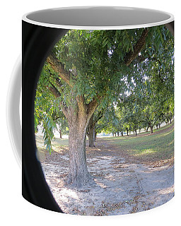 Through The Orchard Coffee Mug by Aaron Martens