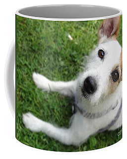 Throw It Again Coffee Mug