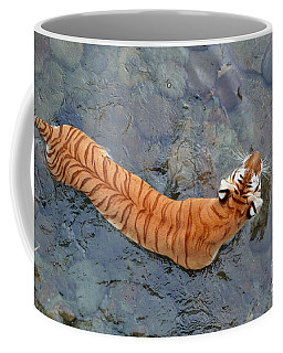 Coffee Mug featuring the photograph Tiger In The Stream by Robert Meanor