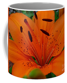 Coffee Mug featuring the photograph Tiger Lily by Bianca Nadeau
