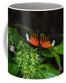 Coffee Mug featuring the photograph Tiger Long Wing by Tam Ryan