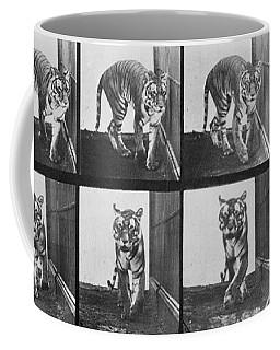 Tiger Pacing Coffee Mug
