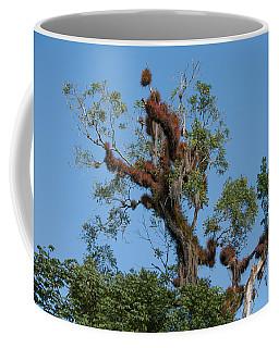 Tikal Furry Tree Coffee Mug