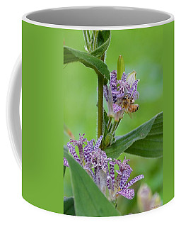 Toad Lily And Hover Fly Coffee Mug
