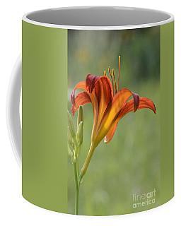 Today's Bloom Coffee Mug by Amy Porter