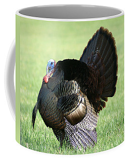 Tom Turkey Coffee Mug by TnBackroadsPhotos