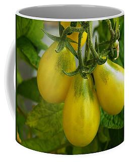 Tomato Triptych Coffee Mug
