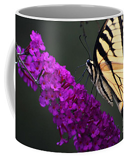 Coffee Mug featuring the photograph Too Close For Comfort by Judy Wolinsky